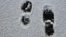 impronte-sulla-neve 21135434