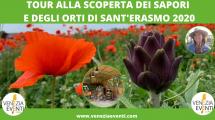 Tour i sapori di Sant'Erasmo
